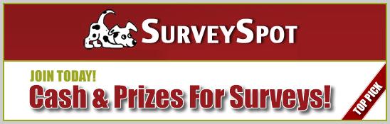 Survey Spot